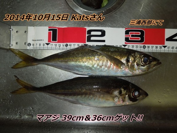 128-2[1]
