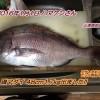 磯マダイ48cm1.7kgゲット!
