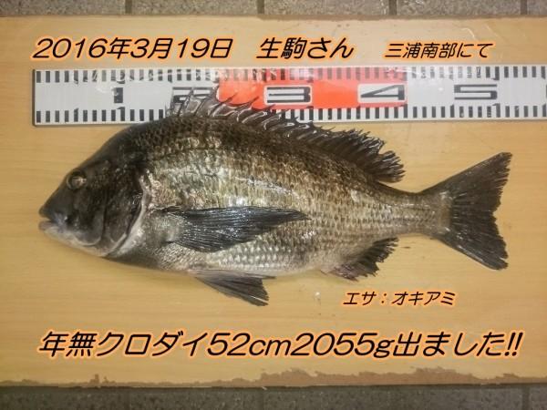 DSC_0074