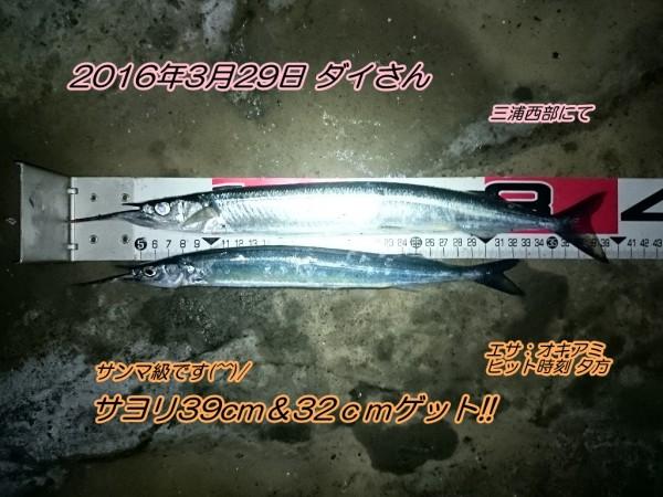 DSC_0281