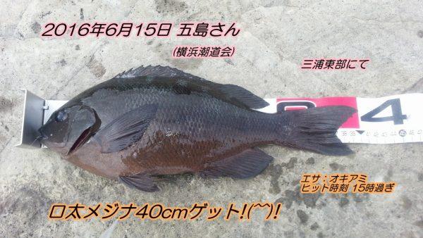 20160615_17 (2)