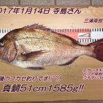 磯マダイ51cm1585gゲット(^◇^)