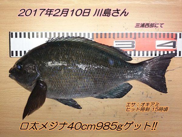 DSC_0190