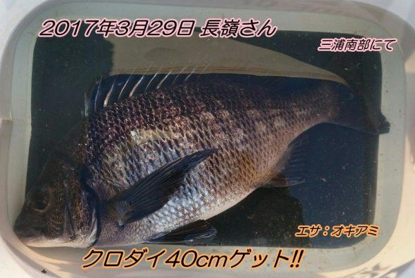 20170329_190248
