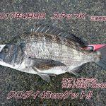 MFG神奈川海釣り大会参戦記