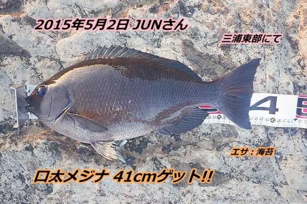 gure-41cm_thump