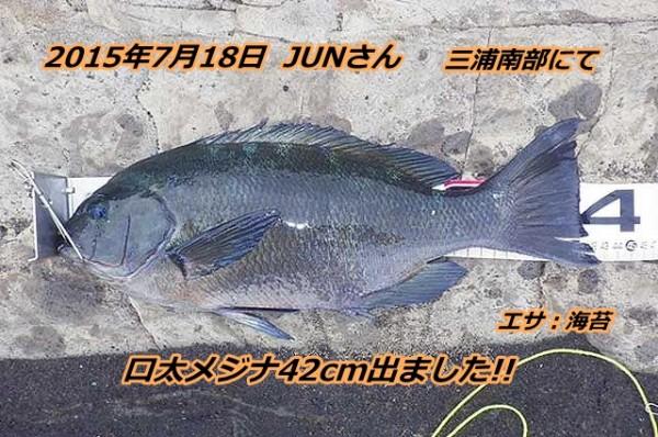 1-gure42cm_thump