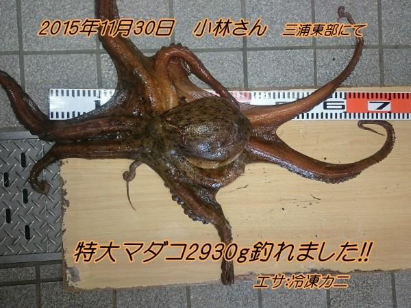 DSC_0945