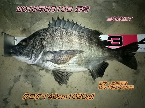 DSC_0376
