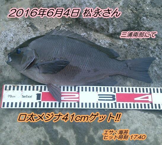 kimg1146-1