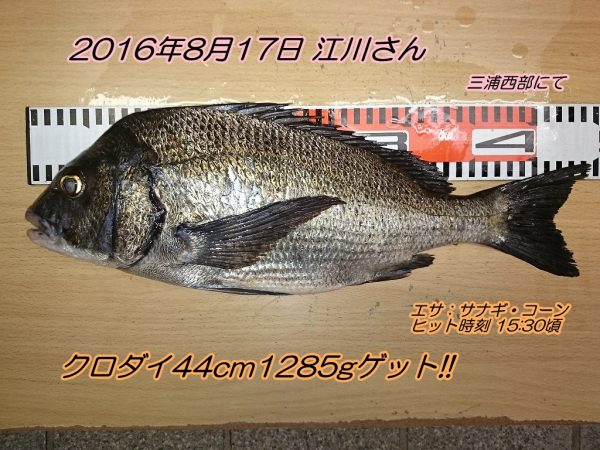 DSC_0471