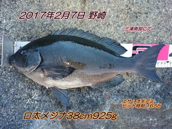 DSC_0184