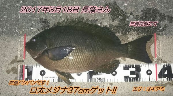 20170319_003332